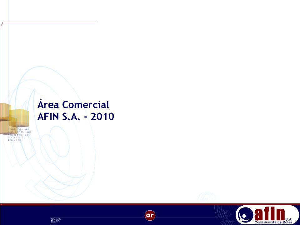 Área Comercial AFIN S.A. - 2010