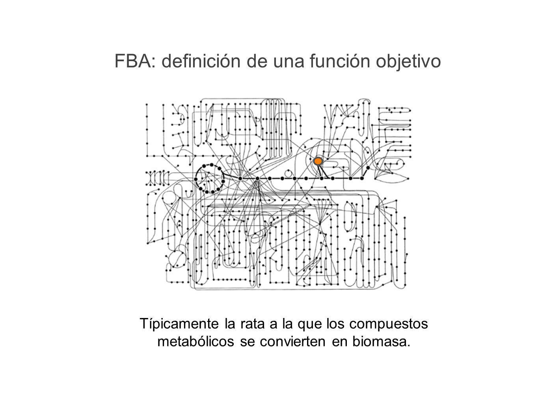 FBA: definición de una función objetivo Típicamente la rata a la que los compuestos metabólicos se convierten en biomasa.