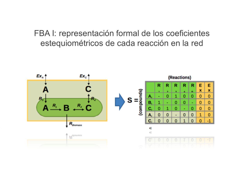 FBA I: representación formal de los coeficientes estequiométricos de cada reacción en la red