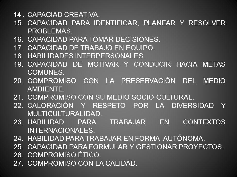 14. CAPACIAD CREATIVA. 15. CAPACIDAD PARA IDENTIFICAR, PLANEAR Y RESOLVER PROBLEMAS. 16. CAPACIDAD PARA TOMAR DECISIONES. 17. CAPACIDAD DE TRABAJO EN