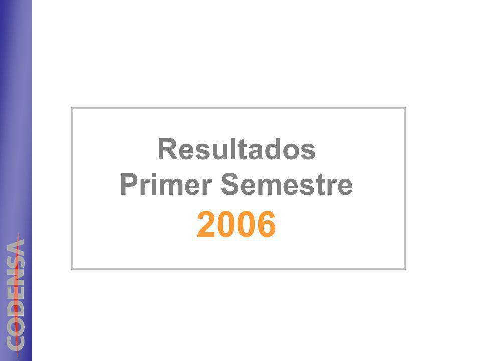 Resultados Primer Semestre 2006
