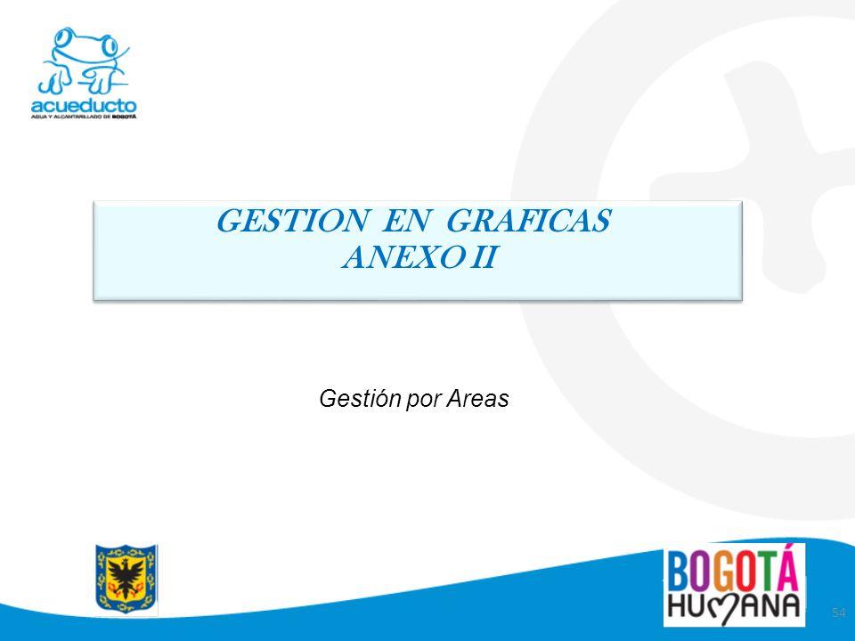 54 Gestión por Areas GESTION EN GRAFICAS ANEXO II GESTION EN GRAFICAS ANEXO II