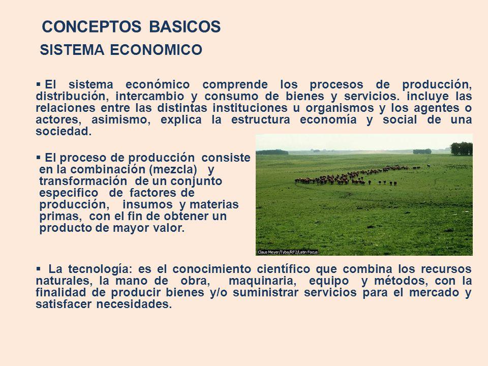 CONCEPTOS BASICOS SISTEMA ECONOMICO El sistema económico comprende los procesos de producción, distribución, intercambio y consumo de bienes y servici