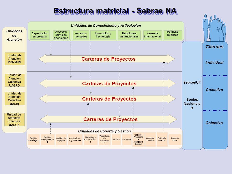 Clientes Colectivo Individual Colectivo Sebrae/UF Socios Nacionale s Unidades de Atención Estructura matricial - Sebrae NA Unidades de Conocimiento y