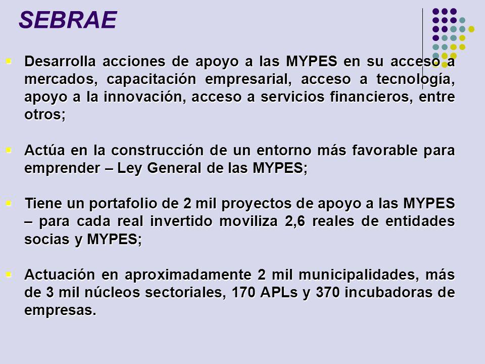 Desarrolla acciones de apoyo a las MYPES en su acceso a mercados, capacitación empresarial, acceso a tecnología, apoyo a la innovación, acceso a servi