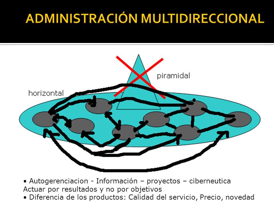 piramidal horizontal Autogerenciacion - Información – proyectos – ciberneutica Actuar por resultados y no por objetivos Diferencia de los productos: Calidad del servicio, Precio, novedad