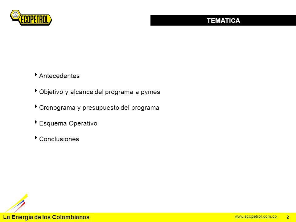 La Energía de los Colombianos www.ecopetrol.com.co PROGRAMA DE APOYO A PYMES NACIONALES Gerencia Administrativa Astrid Alvarez Gerente Diciembre de 2004 1