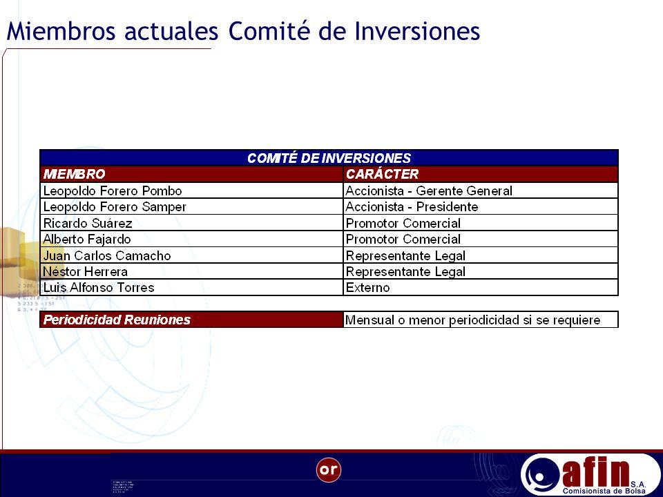 Miembros actuales Comité de Inversiones