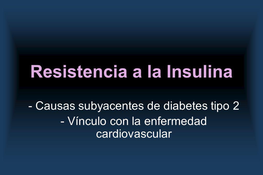 Resistencia a la Insulina - Causas subyacentes de diabetes tipo 2 - Vínculo con la enfermedad cardiovascular