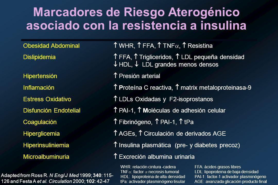 Marcadores de Riesgo Aterogénico asociado con la resistencia a insulina Obesidad Abdominal WHR, FFA, TNF, Resistina Dislipidemia FFA, Trigliceridos, LDL pequeña densidad HDL, LDL grandes menos densos Hipertensión Presión arterial Inflamación Proteína C reactiva, matrix metaloproteinasa-9 Estress Oxidativo LDLs Oxidadas y F2-isoprostanos Disfunción Endotelial PAI-1, Moléculas de adhesión celular Coagulación Fibrinógeno, PAI-1, tPa Hiperglicemia AGEs, Circulación de derivados AGE Hiperinsuliniemia Insulina plasmática (pre- y diabetes precoz) Microalbuminuria Excreción albumina urinaria Adapted from Ross R.