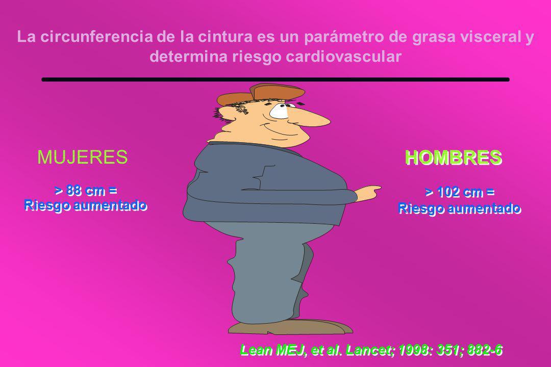 La circunferencia de la cintura es un parámetro de grasa visceral y determina riesgo cardiovascular MUJERES HOMBRES > 88 cm = Riesgo aumentado > 88 cm = Riesgo aumentado > 102 cm = Riesgo aumentado > 102 cm = Riesgo aumentado Lean MEJ, et al.