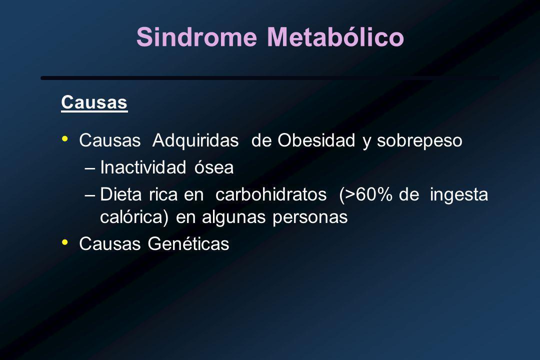 Sindrome Metabólico Causas Causas Adquiridas de Obesidad y sobrepeso –Inactividad ósea –Dieta rica en carbohidratos (>60% de ingesta calórica) en algunas personas Causas Genéticas