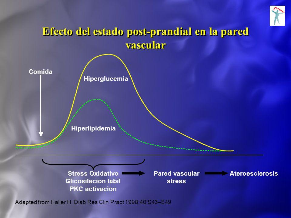 Comida Hiperglucemia Hiperlipidemia Adapted from Haller H. Diab Res Clin Pract 1998;40:S43–S49 Stress Oxidativo Glicosilacion labil PKC activacion Par