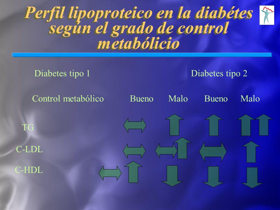Perfil lipoproteico en la diabétes según el grado de control metabólicio Diabetes tipo 1 Diabetes tipo 2 Control metabólico Bueno Malo Bueno Malo TG C