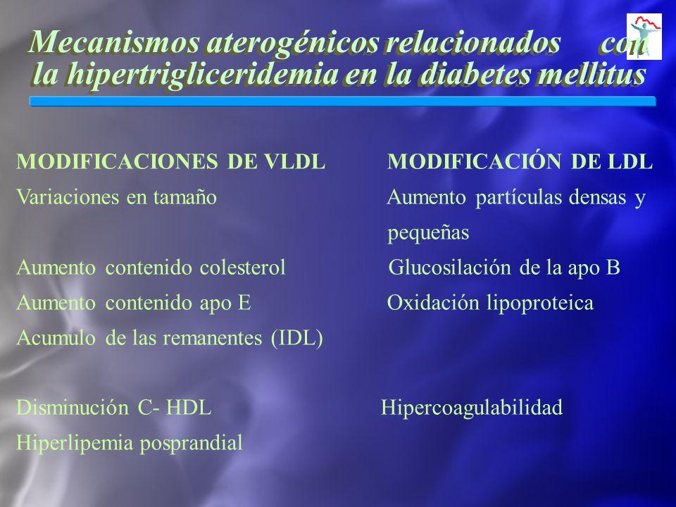 Mecanismos aterogénicos relacionados con la hipertrigliceridemia en la diabetes mellitus MODIFICACIONES DE VLDL MODIFICACIÓN DE LDL Variaciones en tam