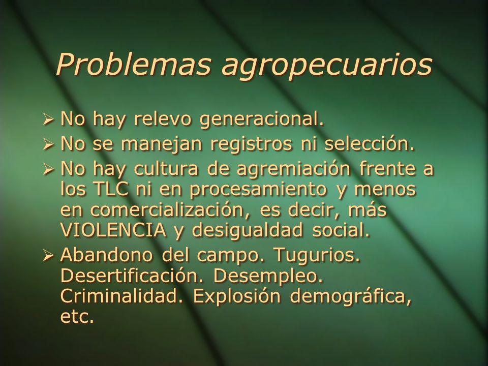 Problemas agropecuarios No hay relevo generacional.