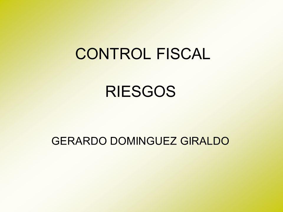 CONTROL FISCAL RIESGOS GERARDO DOMINGUEZ GIRALDO