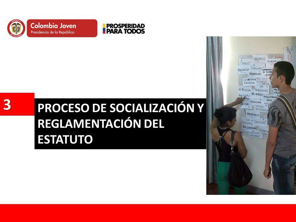 PROCESO DE SOCIALIZACIÓN Y REGLAMENTACIÓN DEL ESTATUTO 3