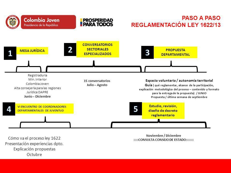 PASO A PASO REGLAMENTACIÓN LEY 1622/13 Registraduria Min. Interior Colombia Joven Alta consejería para las regiones Jurídica DAPRE Junio – Diciembre C