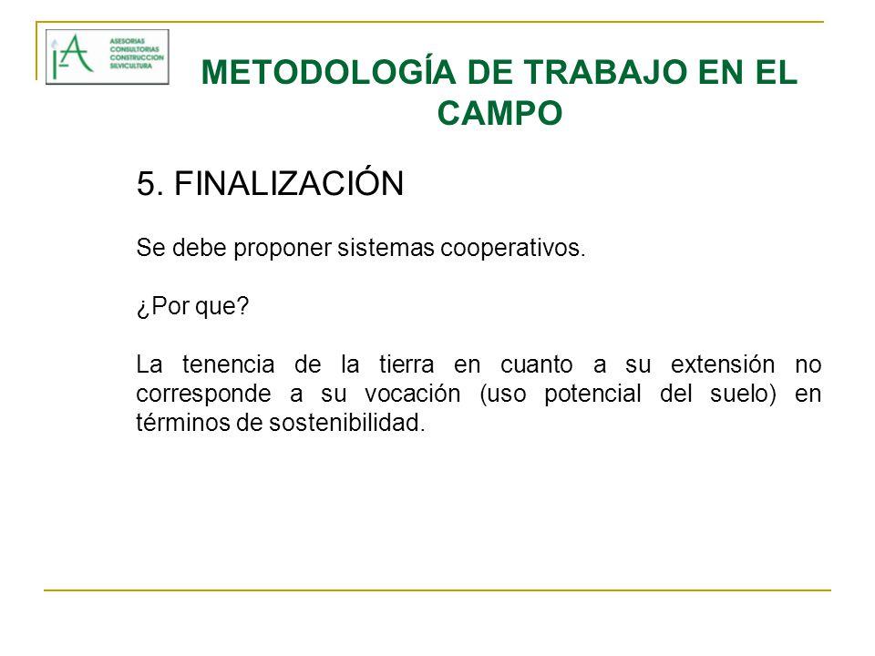 METODOLOGÍA DE TRABAJO EN EL CAMPO 5. FINALIZACIÓN Se debe proponer sistemas cooperativos. ¿Por que? La tenencia de la tierra en cuanto a su extensión