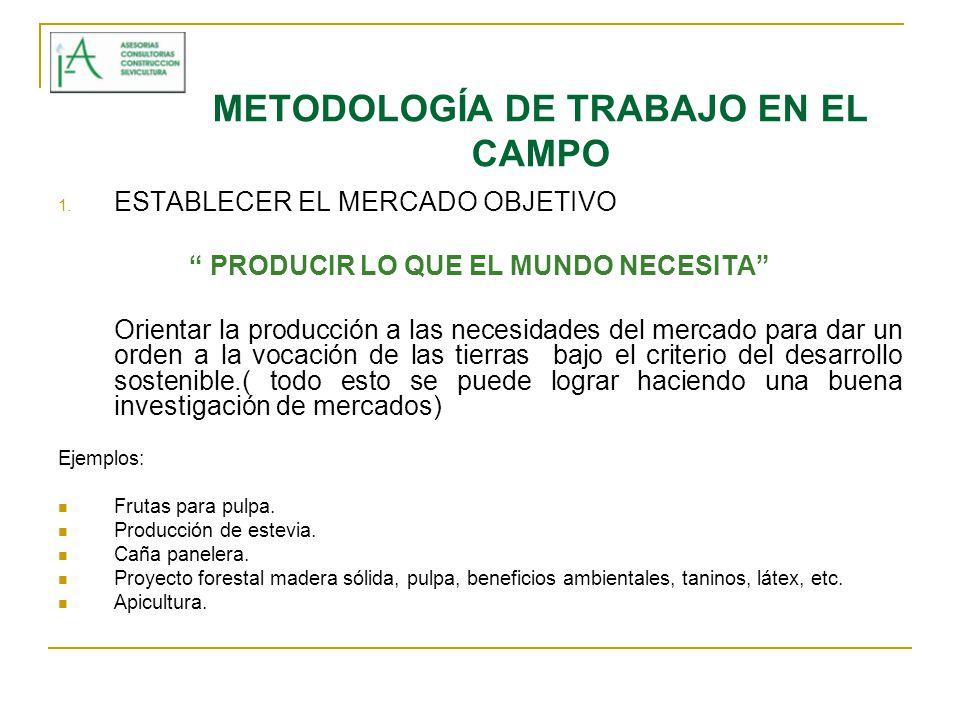 METODOLOGÍA DE TRABAJO EN EL CAMPO 2.