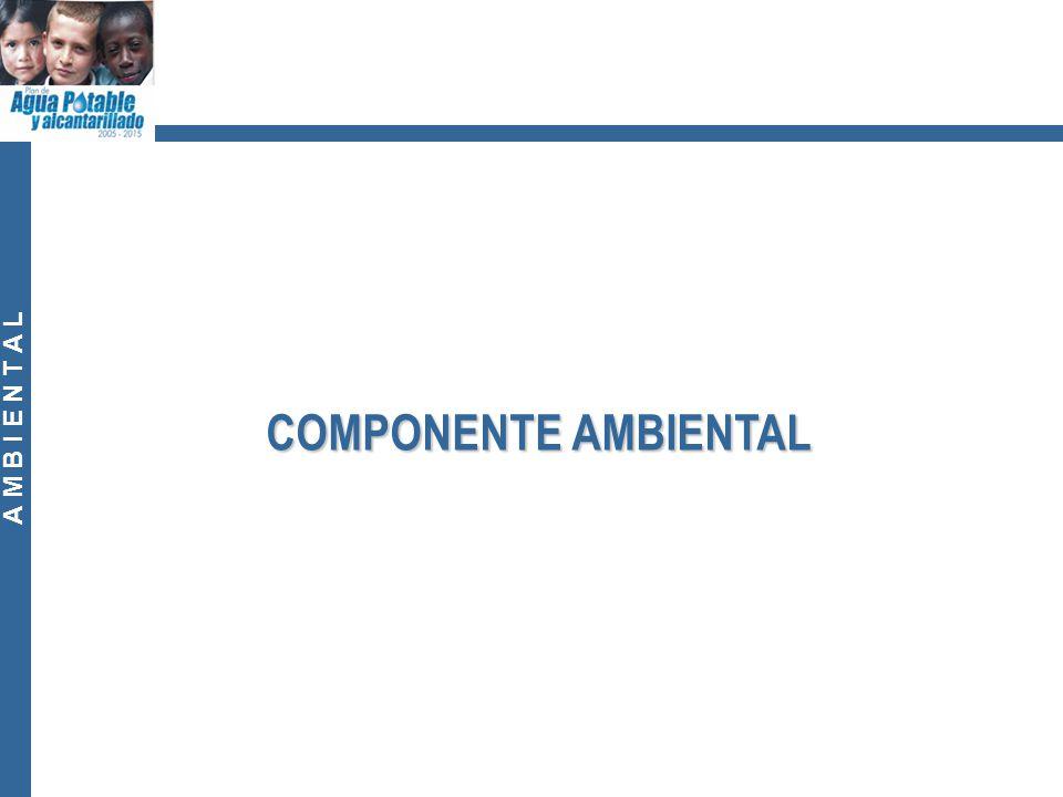A M B I E N T A L COMPONENTE AMBIENTAL