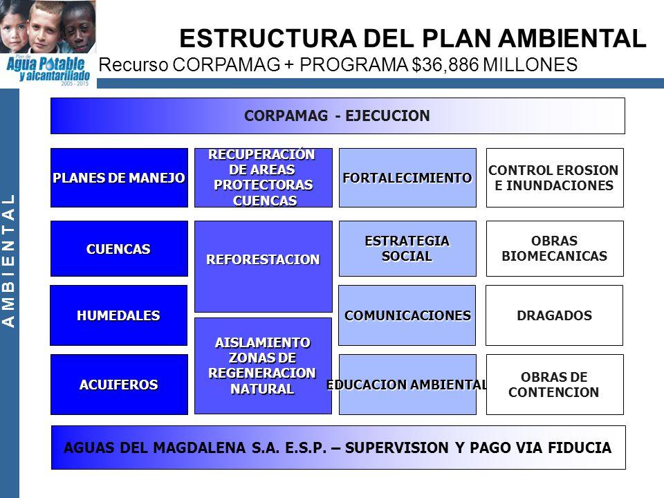 A M B I E N T A L PLANES DE MANEJO CUENCAS HUMEDALES ACUIFEROS RECUPERACIÓN DE AREAS PROTECTORAS CUENCAS CUENCAS REFORESTACION AISLAMIENTO ZONAS DE REGENERACIONNATURAL FORTALECIMIENTO ESTRATEGIASOCIAL COMUNICACIONES EDUCACION AMBIENTAL CONTROL EROSION E INUNDACIONES OBRAS BIOMECANICAS DRAGADOS OBRAS DE CONTENCION CORPAMAG - EJECUCION AGUAS DEL MAGDALENA S.A.