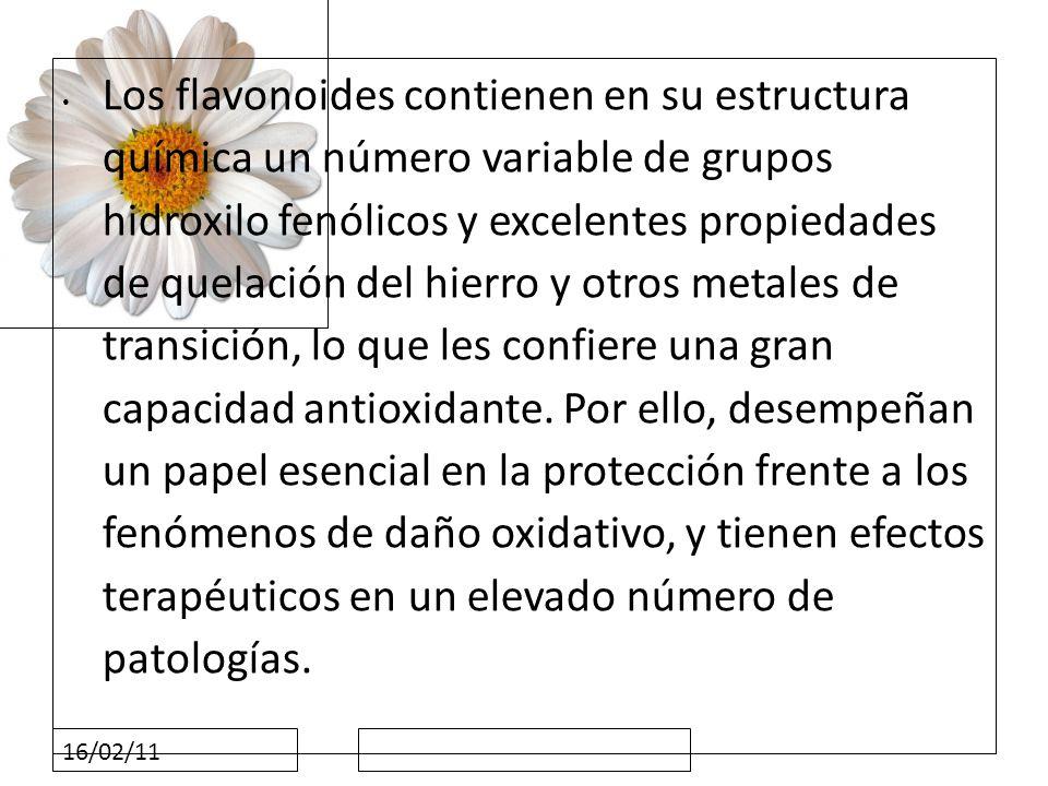 16/02/11 Los flavonoides contienen en su estructura química un número variable de grupos hidroxilo fenólicos y excelentes propiedades de quelación del