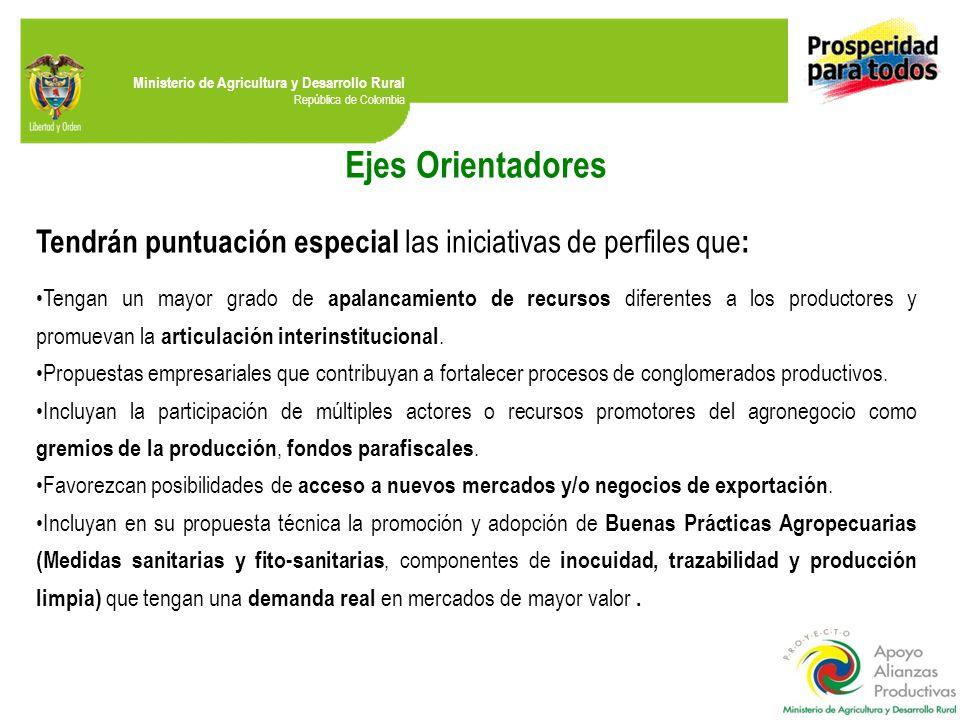 Ministerio de Agricultura y Desarrollo Rural República de Colombia Ejes Orientadores Tendrán puntuación especial las iniciativas de perfiles que : Tengan un mayor grado de apalancamiento de recursos diferentes a los productores y promuevan la articulación interinstitucional.