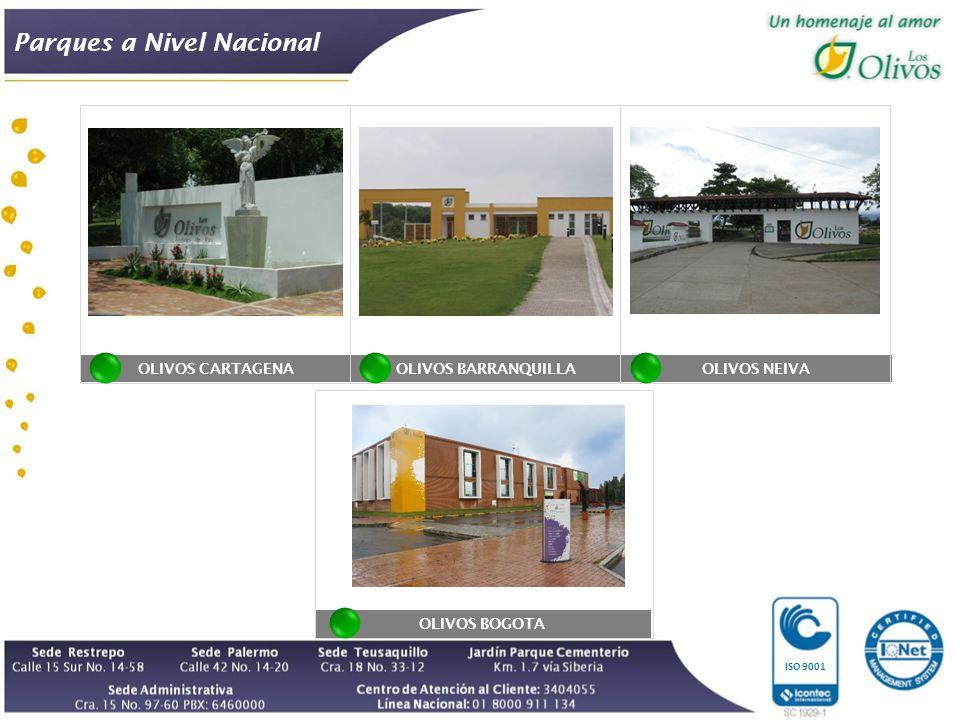 OLIVOS CARTAGENA Parques a Nivel Nacional ISO 9001 OLIVOS BARRANQUILLAOLIVOS NEIVA OLIVOS BOGOTA