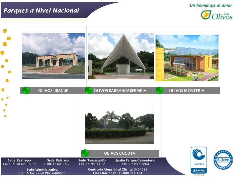 OLIVOS IBAGUE ISO 9001 OLIVOS BARRANCABERMEJAOLIVOS MONTERIA OLIVOS CUCUTA Parques a Nivel Nacional