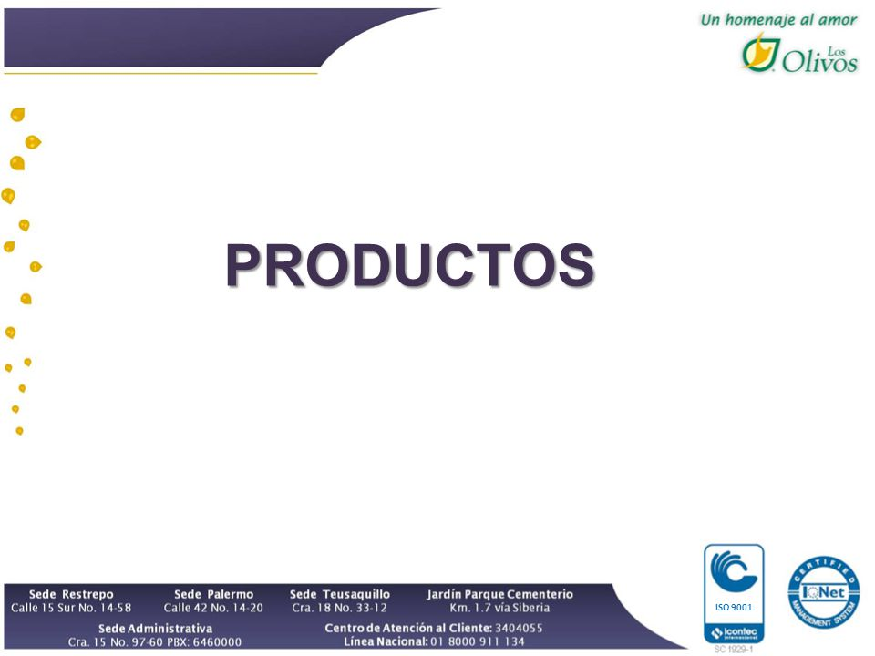 ISO 9001 PRODUCTOS