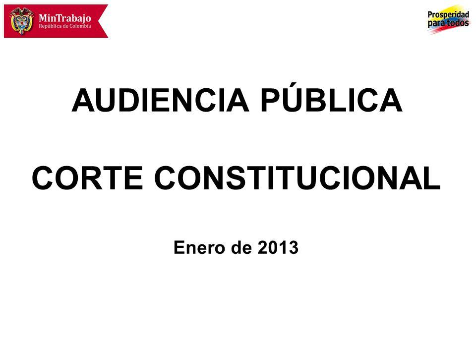 AUDIENCIA PÚBLICA CORTE CONSTITUCIONAL Enero de 2013