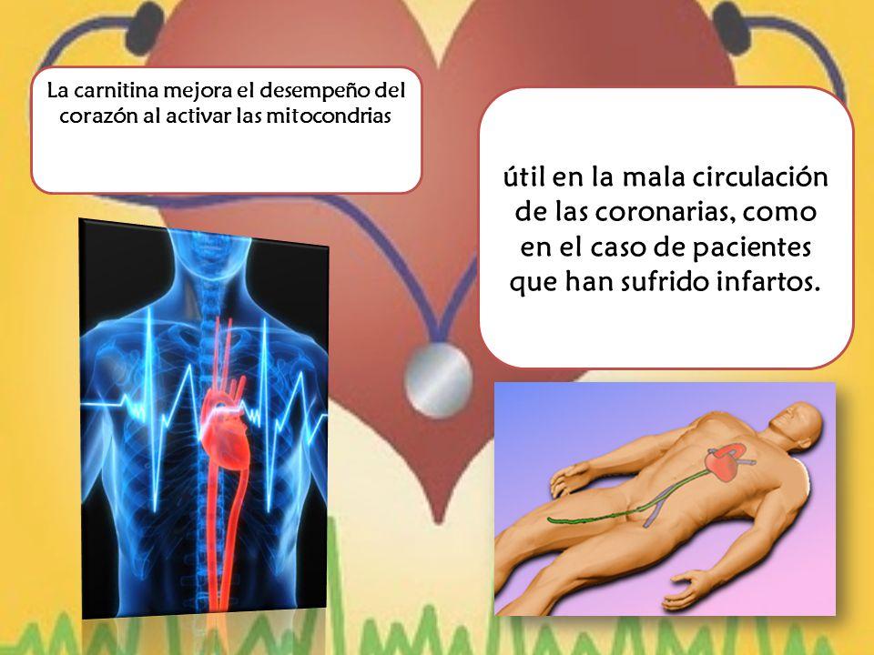 útil en la mala circulación de las coronarias, como en el caso de pacientes que han sufrido infartos.