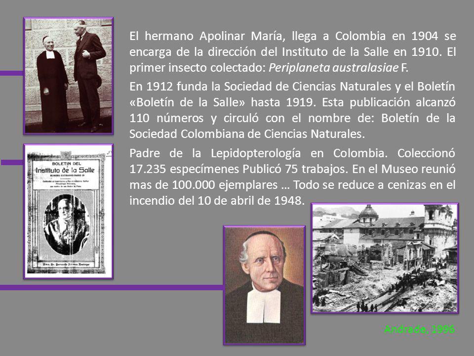 El hermano Apolinar María, llega a Colombia en 1904 se encarga de la dirección del Instituto de la Salle en 1910. El primer insecto colectado: Peripla