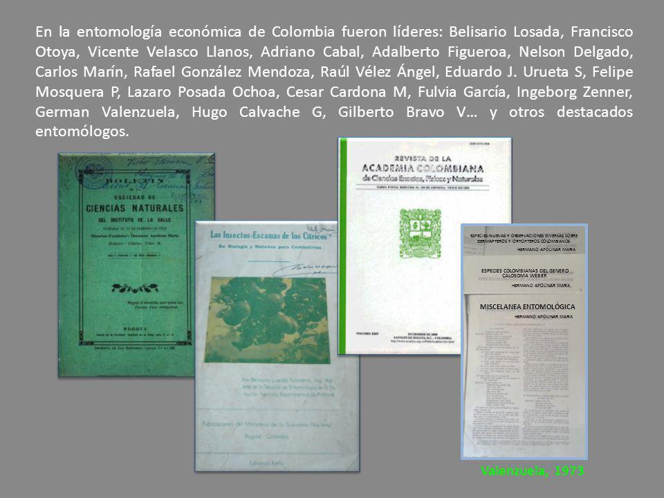 En la entomología económica de Colombia fueron líderes: Belisario Losada, Francisco Otoya, Vicente Velasco Llanos, Adriano Cabal, Adalberto Figueroa,
