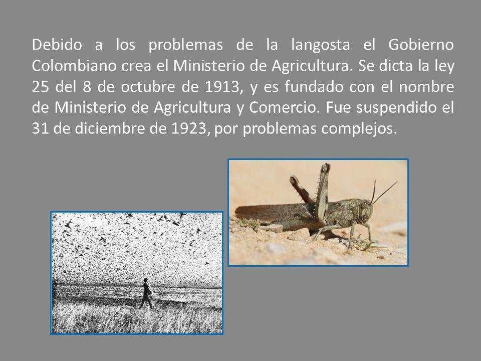Debido a los problemas de la langosta el Gobierno Colombiano crea el Ministerio de Agricultura. Se dicta la ley 25 del 8 de octubre de 1913, y es fund