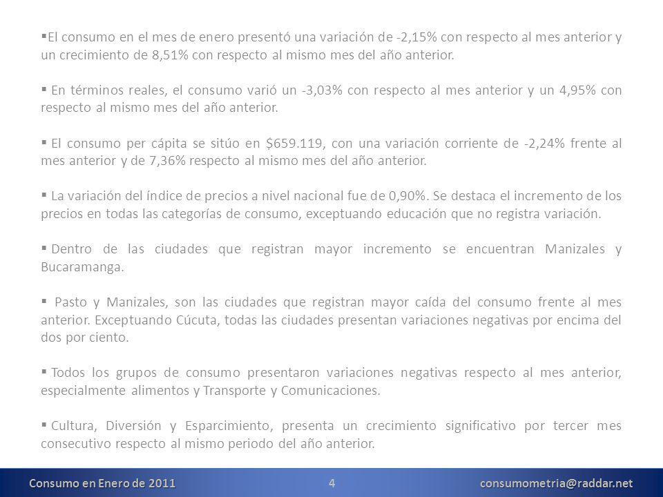 15consumometria@raddar.net Consumo en Enero de 2011
