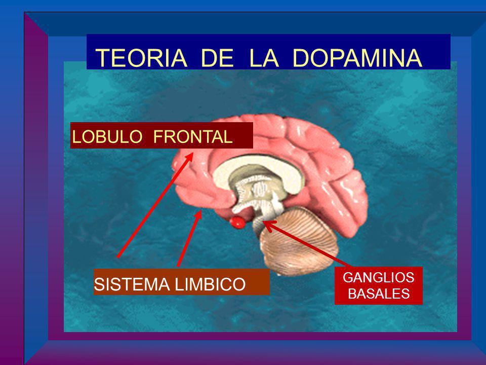 SISTEMA LIMBICO TEORIA DE LA DOPAMINA LOBULO FRONTAL GANGLIOS BASALES