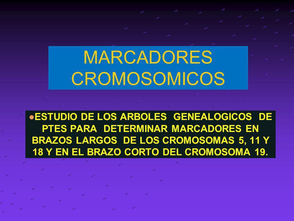 MARCADORES CROMOSOMICOS ESTUDIO DE LOS ARBOLES GENEALOGICOS DE PTES PARA DETERMINAR MARCADORES EN BRAZOS LARGOS DE LOS CROMOSOMAS 5, 11 Y 18 Y EN EL B