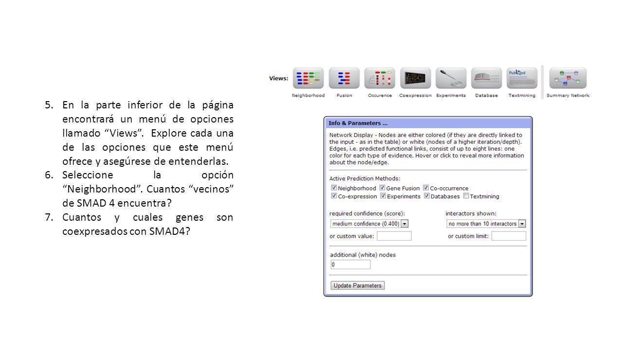 5.En la parte inferior de la página encontrará un menú de opciones llamado Views.