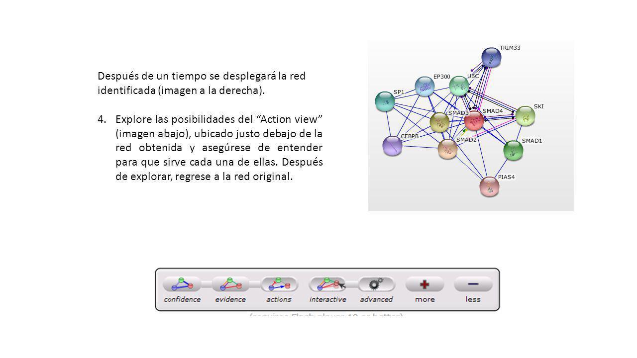 Después de un tiempo se desplegará la red identificada (imagen a la derecha).
