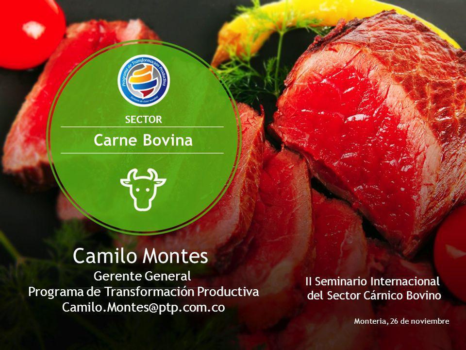 Monteria, 26 de noviembre Camilo Montes Gerente General Programa de Transformación Productiva Camilo.Montes@ptp.com.co SECTOR Carne Bovina II Seminari