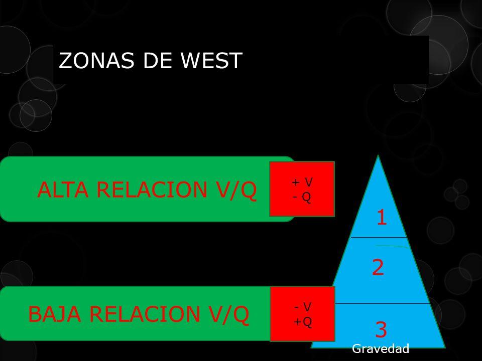 ZONAS DE WEST ALTA RELACION V/Q 2 1 3 BAJA RELACION V/Q Gravedad + V - Q - V +Q