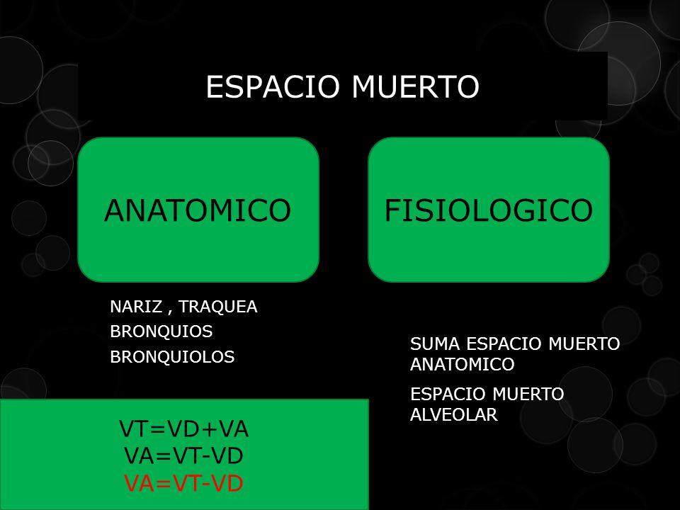 NARIZ, TRAQUEA BRONQUIOS BRONQUIOLOS ESPACIO MUERTO ANATOMICOFISIOLOGICO VT=VD+VA VA=VT-VD SUMA ESPACIO MUERTO ANATOMICO ESPACIO MUERTO ALVEOLAR
