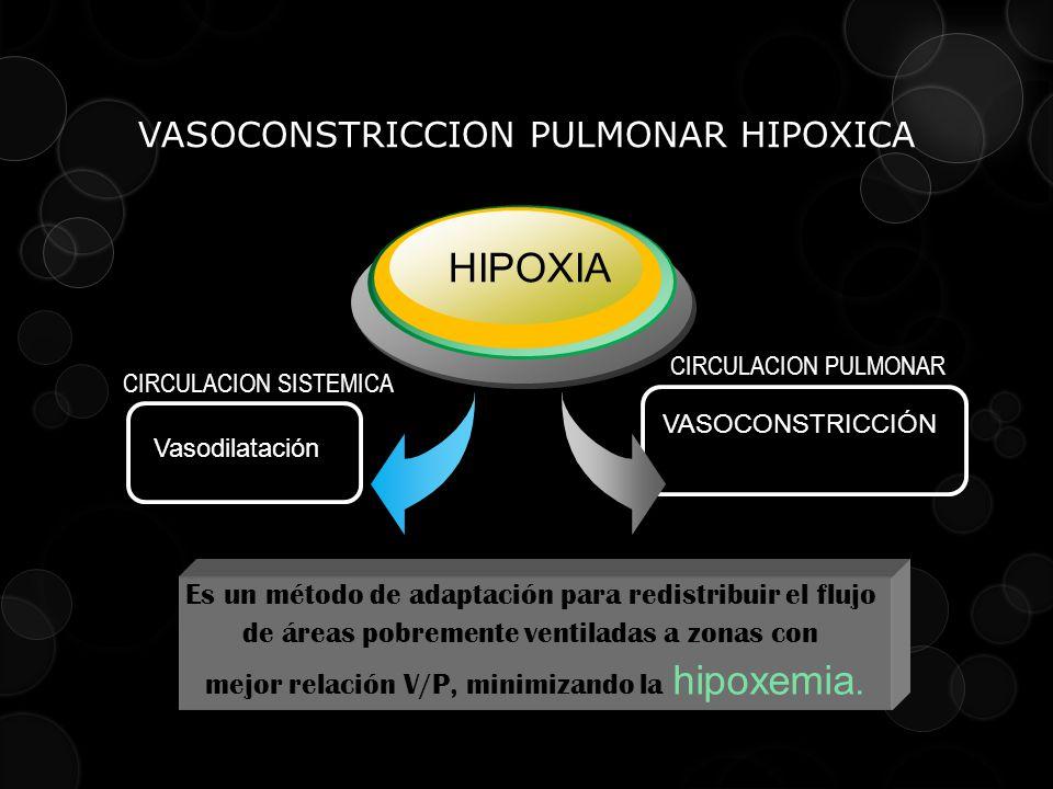 VASOCONSTRICCION PULMONAR HIPOXICA Vasodilatación HIPOXIA VASOCONSTRICCIÓN Aumento de PAP y RVP CIRCULACION SISTEMICA CIRCULACION PULMONAR Es un métod