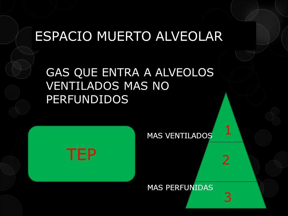 GAS QUE ENTRA A ALVEOLOS VENTILADOS MAS NO PERFUNDIDOS TEP 2 1 3 MAS VENTILADOS MAS PERFUNIDAS