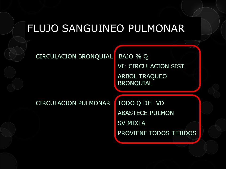 FLUJO SANGUINEO PULMONAR CIRCULACION BRONQUIAL BAJO % Q VI: CIRCULACION SIST. ARBOL TRAQUEO BRONQUIAL CIRCULACION PULMONAR TODO Q DEL VD ABASTECE PULM