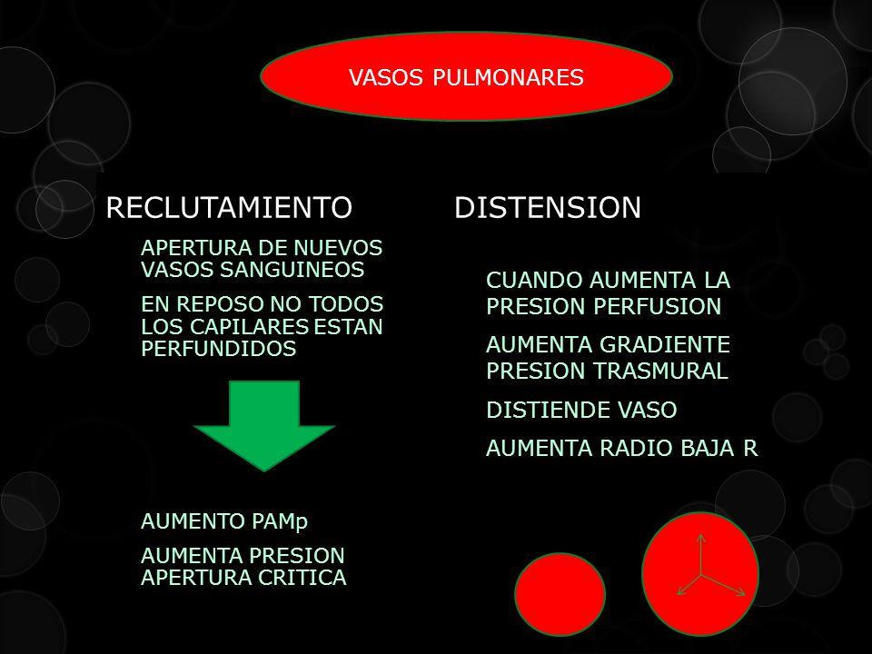 RECLUTAMIENTO APERTURA DE NUEVOS VASOS SANGUINEOS EN REPOSO NO TODOS LOS CAPILARES ESTAN PERFUNDIDOS AUMENTO PAMp AUMENTA PRESION APERTURA CRITICA DISTENSION CUANDO AUMENTA LA PRESION PERFUSION AUMENTA GRADIENTE PRESION TRASMURAL DISTIENDE VASO AUMENTA RADIO BAJA R VASOS PULMONARES