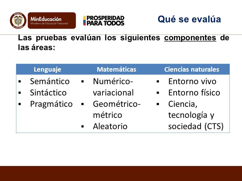 Las pruebas evalúan los siguientes componentes de las áreas: LenguajeMatemáticasCiencias naturales Semántico Sintáctico Pragmático Numérico- variacion